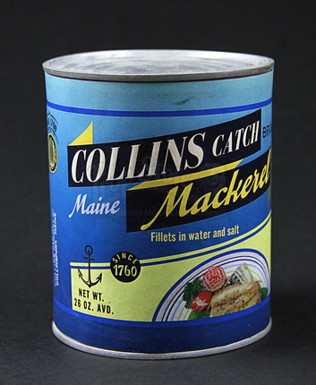 Dark Shadows feature mackerel can